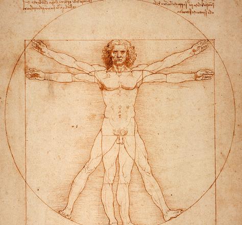 Vitruvian_Man_by_Leonardo_Da_Vinci_small
